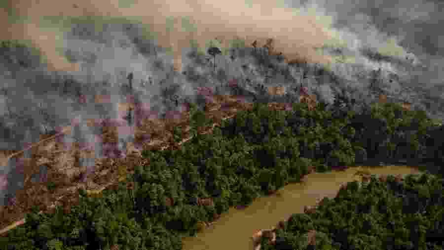 Área devastada pelo fogo na Amazônia; Conselho Nacional da Amazônia Legal teria criado plano para controlar ONGs que atuam na região - Christian Braga / Greenpeace