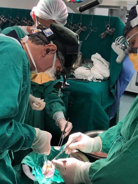 Coração é preparado para a cirurgia no Hospital da Criança e Maternidade, em São José do Rio Preto (SP) - Divulgação