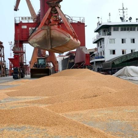 Soja importada pela China é descarregada no porto de Nantong - CHINA STRINGER NETWORK