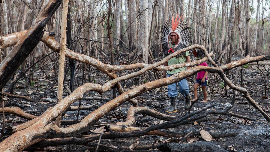 Incêndio provocado em agosto de 2019 por fazendeiros que ocupam parte da Terra Indígena Valparaíso, reivindicada há 29 anos pelo povo Apurinã, em Boca do Acre, Amazonas - Denise Sterbova / Relatório Cimi 2019