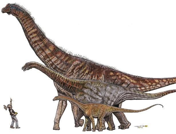 Titanossauro Austroposeidon magnificus tinha 25 metros de comprimento - Museu de Ciências da Terra/Divulgação