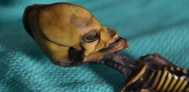 O esqueleto da múmia Ata tem 13 centímetros, mas ossos que aparentavam ser de uma criança de 6 anos - Emery Smith