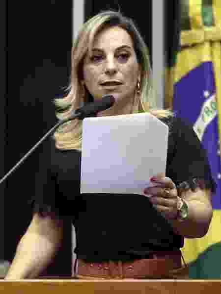 A deputada federal Katia Sastre (PL-SP) em discurso no plenário da Câmara - Claudio Andrade/Câmara dos Deputados - Claudio Andrade/Câmara dos Deputados