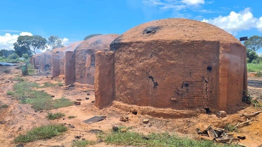 Ao todo, 66 trabalhadores foram libertados do trabalho escravo em carvoaria de Minas Gerais - Italvar Medina/MPT