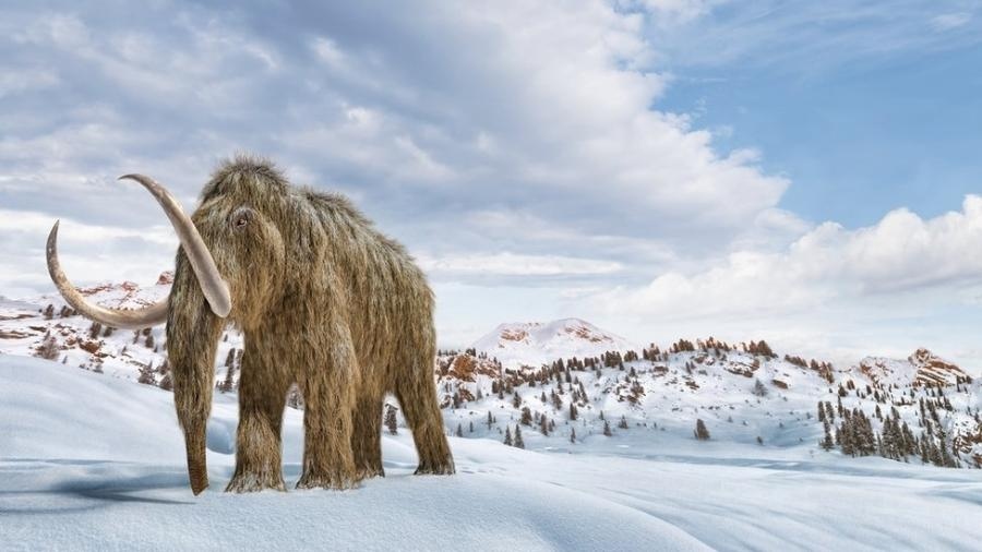 Ilustração de um mamute-lanoso caminhando na neve - Getty Images