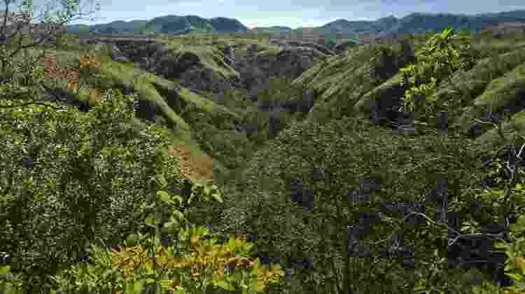 A Serra do Tombador tem 8.700 hectares, onde ficam 437 espécies de plantas e 531 espécies de animais - José Luiz Martins Paiva - José Luiz Martins Paiva