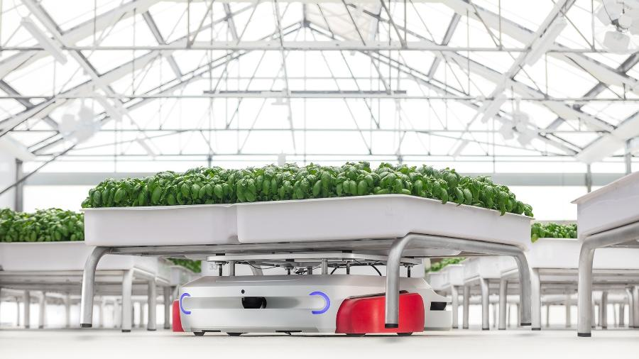 Robôs integrados num sistema hidropônico podem consumir 90% menos água, segundo empresa - Iron Ox