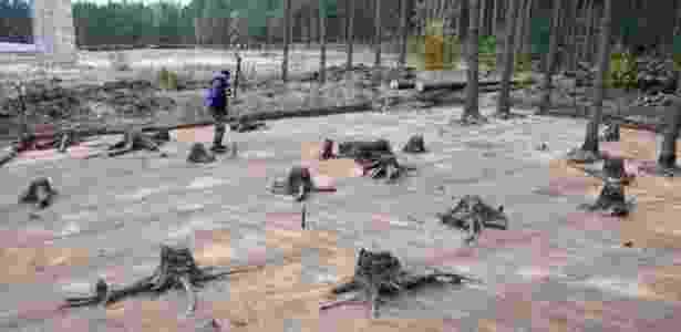 Escavações ocorreram no campo de exterimínio de Sobibor, na Polônia, que nazistas tentaram descaracterizar plantando árvores  - IAA