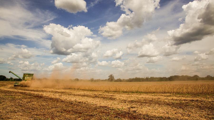 Campo comemora crescimento de quase 40% na receita obtida com a venda de grãos - Ricardo Benichio/Folhapress