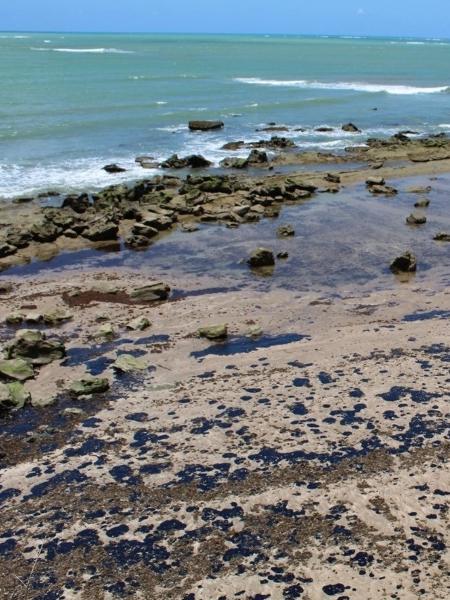 Óleo recobre corais na APA (Área de Proteção Ambiental) Costa dos Corais, em Japaratinga (AL) - Ricardo J. Miranda
