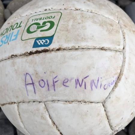 Bola de garota irlandesa viaja 200 km e vai parar em Gales - Reprodução/Facebook
