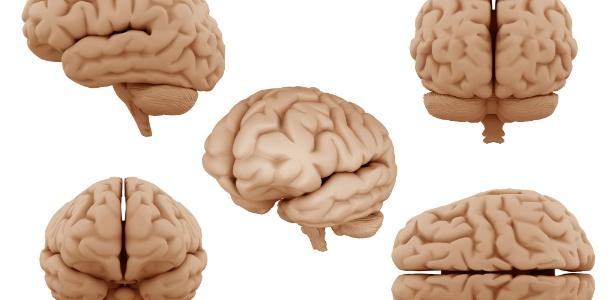 Empresa quer preservar o cérebro e convertê-lo em dados digitais  - Getty Images