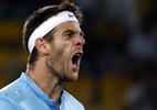 Del Potro bate Federer em final e dedica a seu cachorro, morto há um mês - REUTERS/Marcos Brindicci