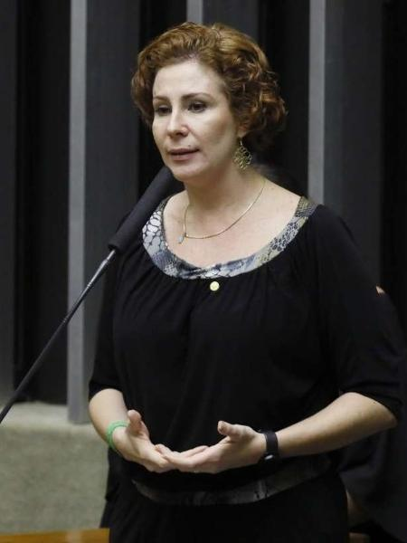 Carla Zambelli (PSL-SP)  - LUIS MACEDO/CÂMARA DOS DEPUTADOS