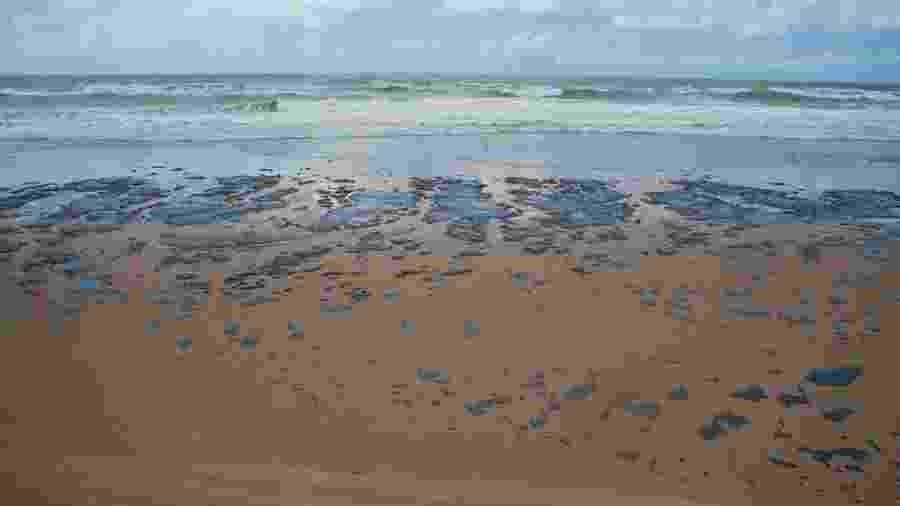 Há mais de um mês praias do Nordeste são afetadas por manchas de óleo  - Agência Brasil