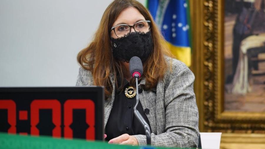 Bia Kicis tem na pauta da CCJ dois projetos lei que podem afetar decisões do STF - Najara Araujo/Câmara dos Deputados