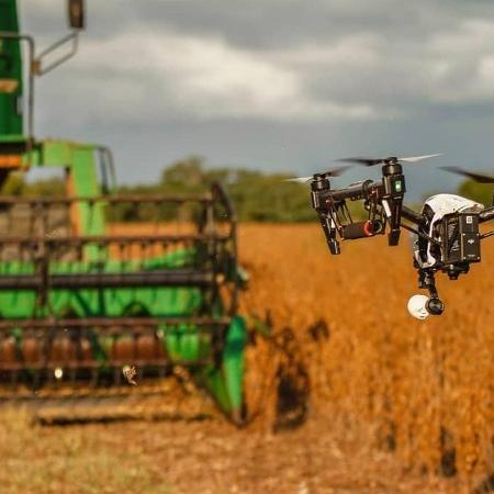 Produção agrícola do Brasil alimenta 10% do mundo, diz estudo da Embrapa - Imagem: Gazeta do Povo