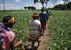 MPF: Governo Temer não demarca, não reconhece e não protege terras indígenas - Foto: ABr
