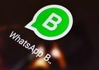 Confira as vantagens do recém-lançado Whatsapp Business - Zigg