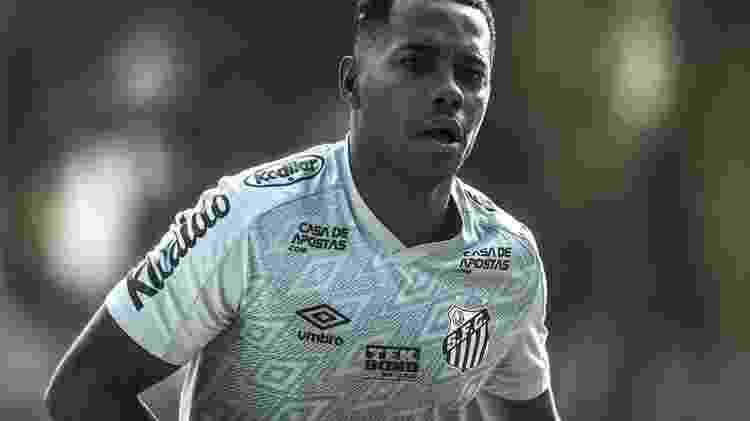 Robinho - Ivan Storti / Santos FC / Fotos Públicas - Ivan Storti / Santos FC / Fotos Públicas
