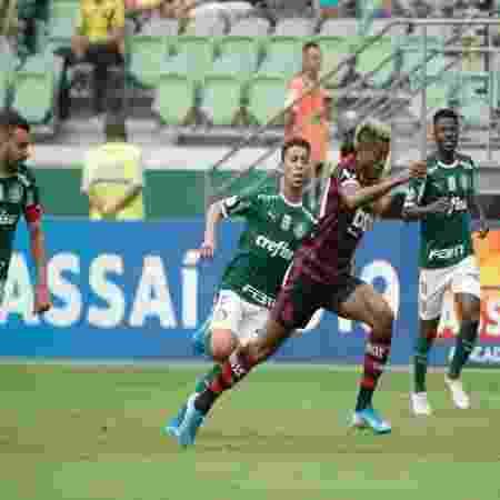 Palmeiras x Flamengo no Brasileiro 2019 - Alexandre Vidal/Flamengo