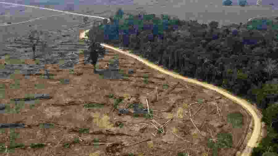 Brasil tem maior índice de desmatamento na Amazônia em 12 anos -                                 CARLOS FABAL/AFP
