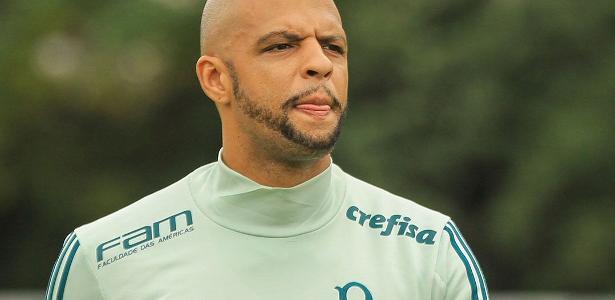 Felipe Melo voltou ao time do Palmeiras após nove jogos fora