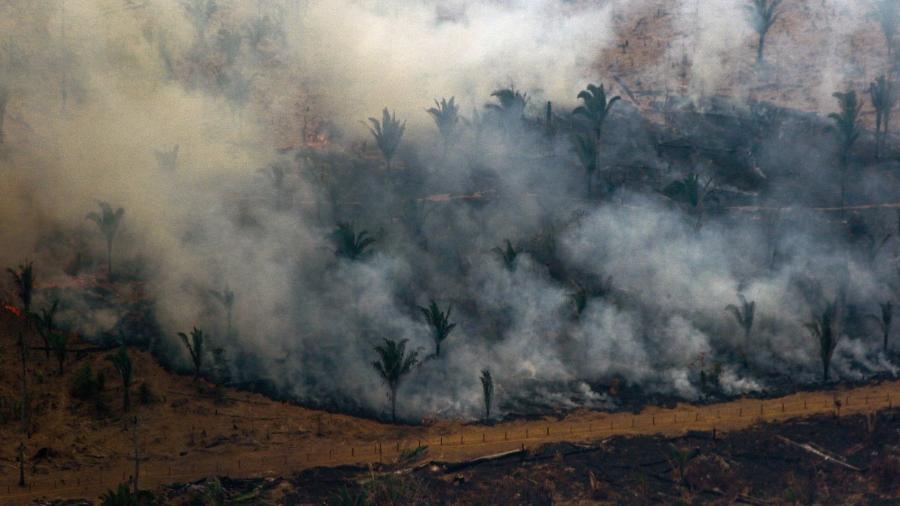 Amazônia já perdeu em agosto 1.045 quilômetros quadrados de floresta, segundo dados do Inpe                              -                                 LULA SAMPAIO/AFP