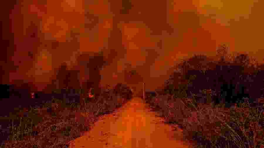 Incêndio no Pantanal - Mayke Toscano/Secom-MT