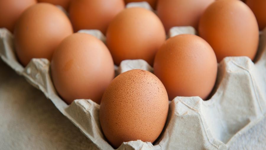 Brasileiro come mais ovos que a média global - Shutterstok