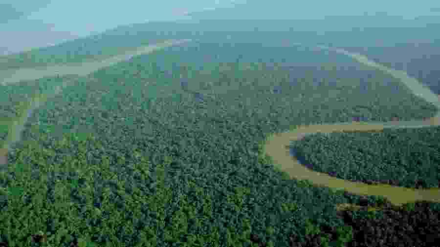 Amazônia  - Foto: lubasi