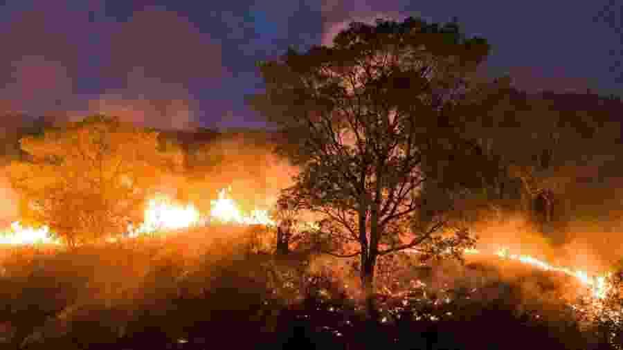 Incêndios estão consumindo o Pantanal                              - IBERE PERISSE/PROJETO SOLOS/AFP