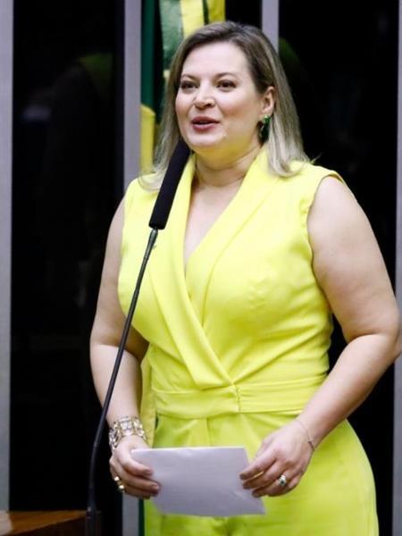 Joice diz ter provas contra rede de difamação na internet ligada a aliados de Bolsonaro - Luis Macedo/Ag. Câmara