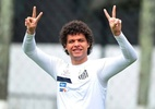 Ivan Storti/ Facebook Santos FC