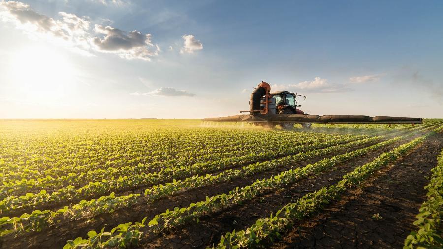 Demanda por farelo e óleo de soja do Brasil avança com greve na Argentina, diz Abiove - iStock