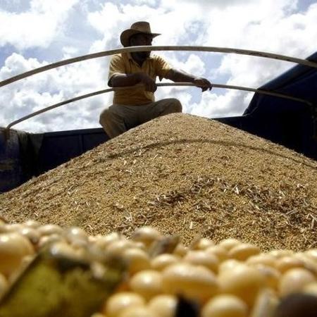 Brasil pode exportar até 8,53 mi de toneladas de soja em fevereiro, estima Anec - Reuters