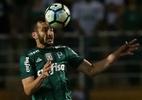 Cesar Greco/Palmeiras