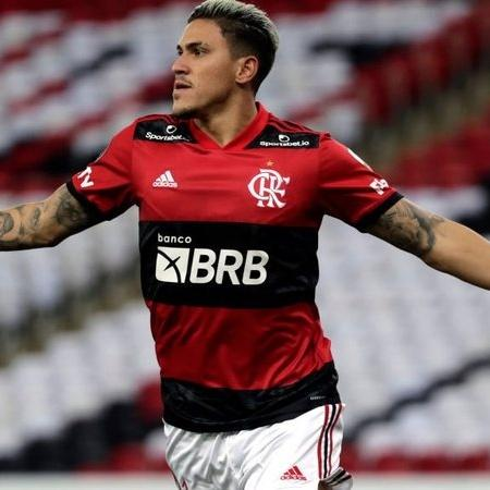 Pedro comemorando o gol marcado pelo Flamengo na vitória diante do Palmeiras no Brasileirão - Transmissão Premiere