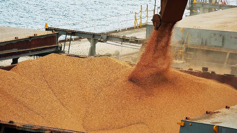 Ministério estuda prorrogar por um ano benefício a exportadores - A participação na receita das exportações do agronegócio do Paraná na balança comercial brasileira aumentou de 13,19% em 2015 para 13,54% no ano de 2016. Foto: Arquivo / SECS