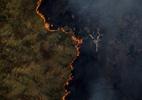 Em carta a Mourão, países europeus cobram medidas contra desmatamento