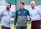 Fábio Menotti/Palmeiras