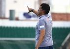 """""""Grande oportunidade"""", diz novo técnico do Sport - Divulgação/Avaí"""