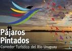 Você conhece o Rio dos Pássaros Pintados? Entenda sua importância para América Latina