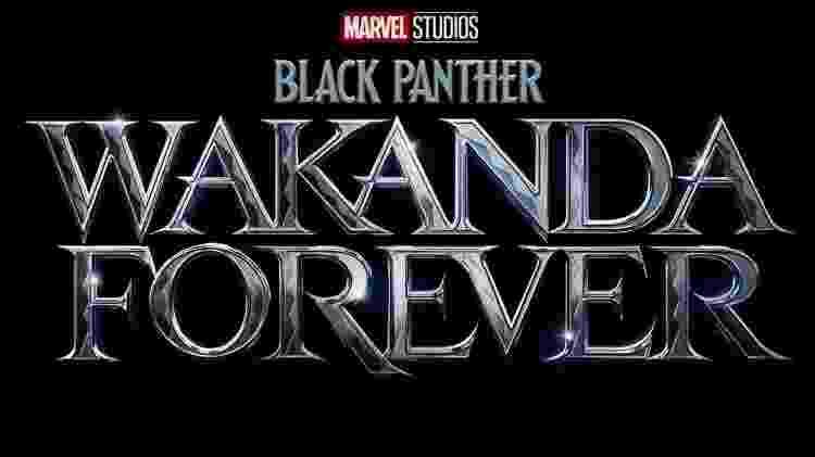 Pantera Negra - Reprodução/Twitter - Reprodução/Twitter