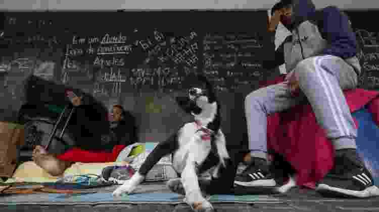 Bibi (esq), a cadelinha Coli e o Matheus, o Índio (dir) - Theo Marques/UOL - Theo Marques/UOL