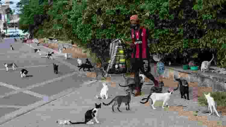 O tatuador Luiz Carlos Santos da Conceição Júnior, 35, que vive com 150 gatos abandonados na restinga - Rafael Martins/UOL - Rafael Martins/UOL