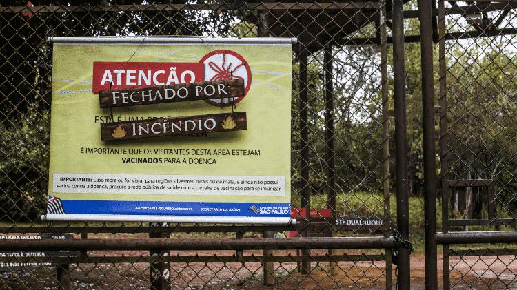 Parque Estadual Juquery (SP) - Ricardo Matsukawa/UOL - Ricardo Matsukawa/UOL