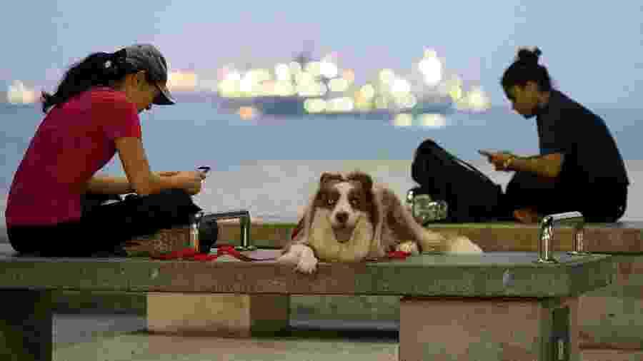 Jovens usam seus smartphones (para tudo, menos para falar ao telefone) na baia de Singapura - AFP