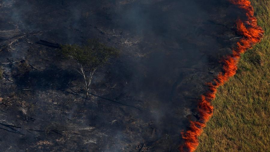Fogo avança sobre floresta amazônica na região de Apuí, na fronteira de Amazonas com Rondônia - Bruno Kelly/Reuters