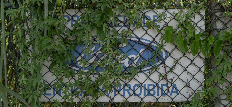 Placa é encoberta por vegetação em terreno da Ford em Taubaté, interior de São Paulo  - Avener Prado/UOL